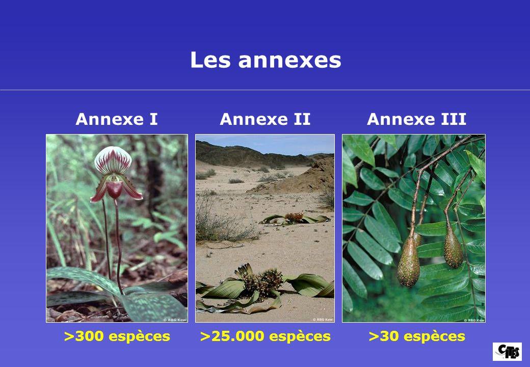 Les annexes Annexe I >300 espèces Annexe II >25.000 espèces Annexe III >30 espèces