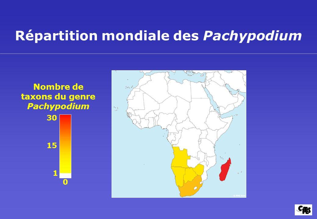 Répartition mondiale des Pachypodium Nombre de taxons du genre Pachypodium 30 15 1 0