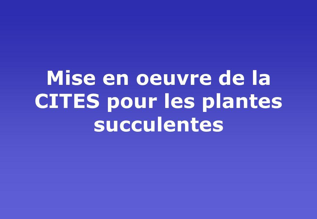 Mise en oeuvre de la CITES pour les plantes succulentes