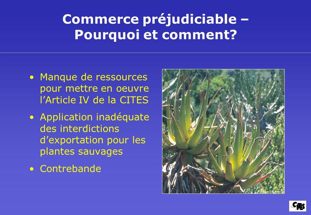 Commerce préjudiciable – Pourquoi et comment? Manque de ressources pour mettre en oeuvre lArticle IV de la CITES Application inadéquate des interdicti