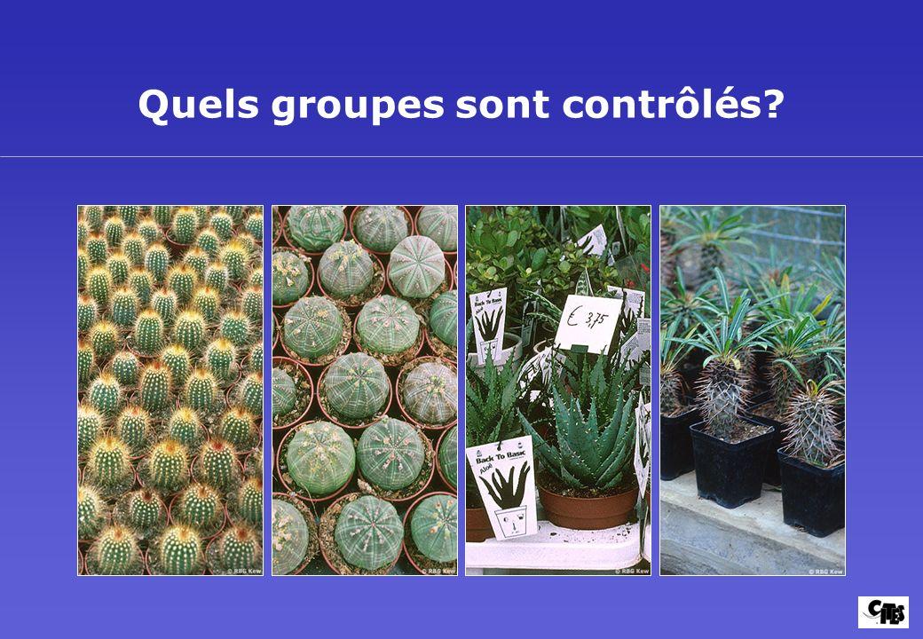 Quels groupes sont contrôlés?