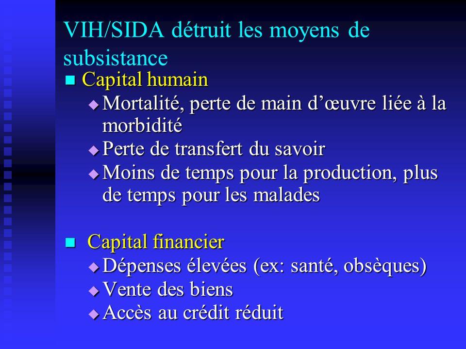 VIH/SIDA détruit les moyens de subsistance Capital humain Capital humain Mortalité, perte de main dœuvre liée à la morbidité Mortalité, perte de main