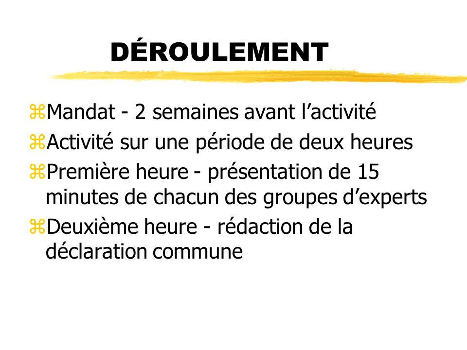 DÉROULEMENT zMandat - 2 semaines avant lactivité zActivité sur une période de deux heures zPremière heure - présentation de 15 minutes de chacun des groupes dexperts zDeuxième heure - rédaction de la déclaration commune