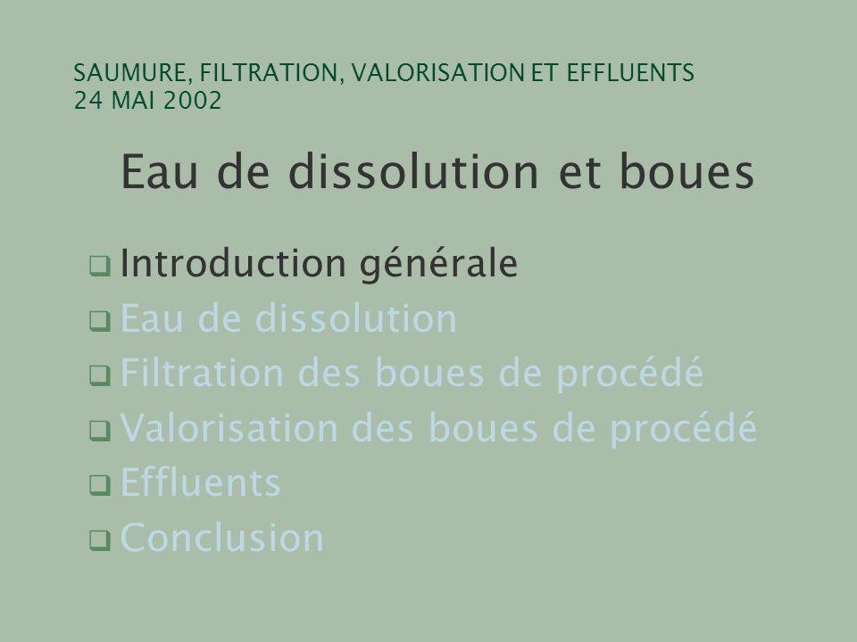 SAUMURE, FILTRATION, VALORISATION ET EFFLUENTS 24 MAI 2002 Eau de dissolution et boues q Introduction générale q Eau de dissolution q Filtration des b