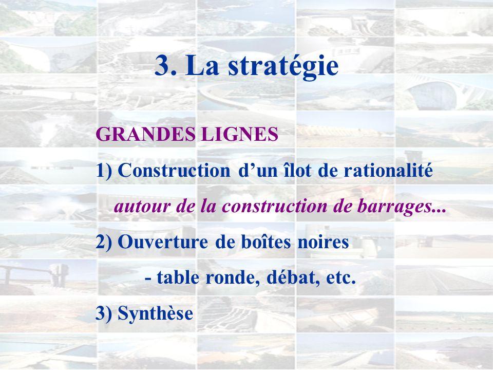 3. La stratégie OBJECTIF PRINCIPAL favoriser la construction de représentations conceptuelles dans un contexte précis par le biais d'interactions avec