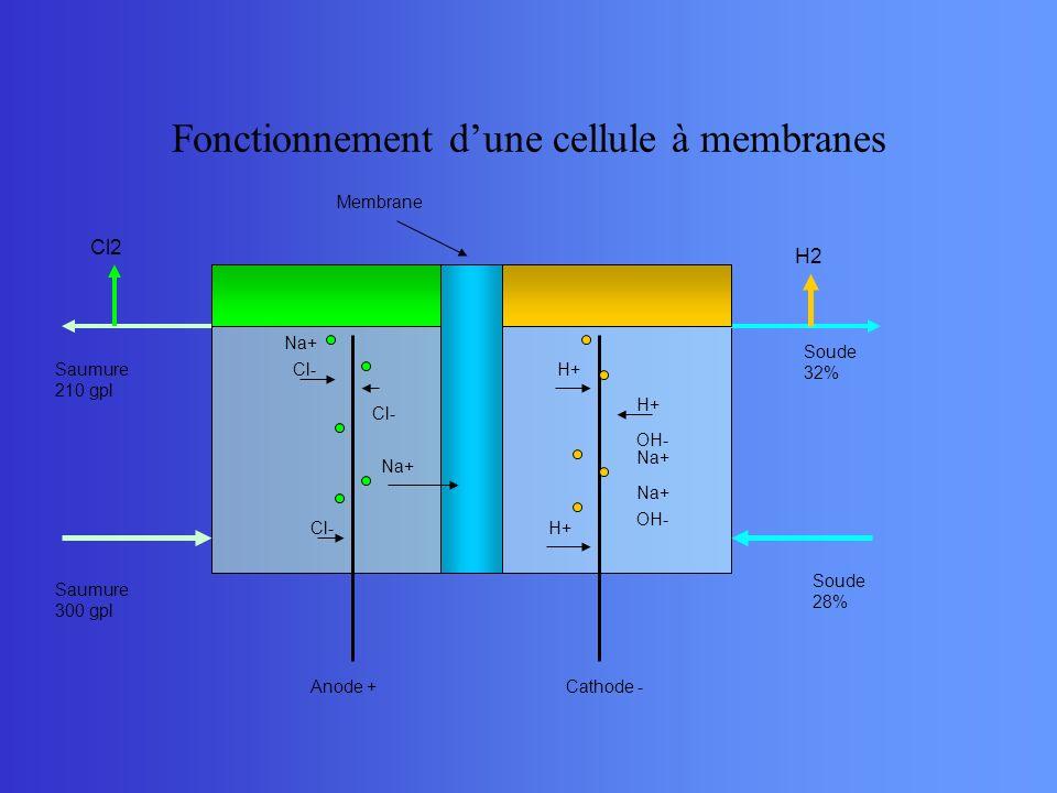 Fonctionnement dune cellule à membranes Na+ Cl- Na+ H+ OH- Na+ Anode +Cathode - Saumure 300 gpl Saumure 210 gpl Soude 28% Soude 32% Cl2 H2 Membrane