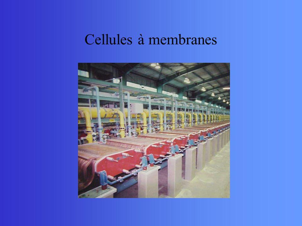 Cellules à membranes