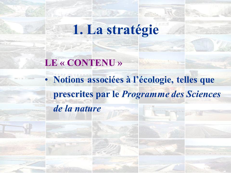 1. La stratégie GRANDES LIGNES 1) Construction dun îlot de rationalité autour de la construction de barrages... 2) Synthèse et exploration de concepts