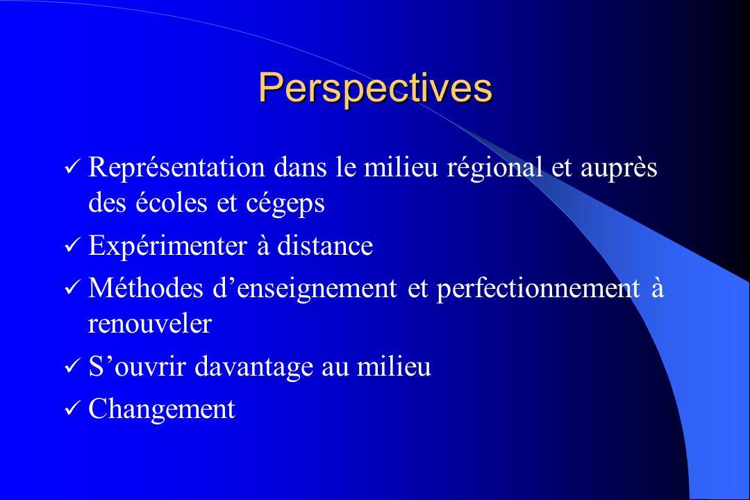 Perspectives Représentation dans le milieu régional et auprès des écoles et cégeps Expérimenter à distance Méthodes denseignement et perfectionnement