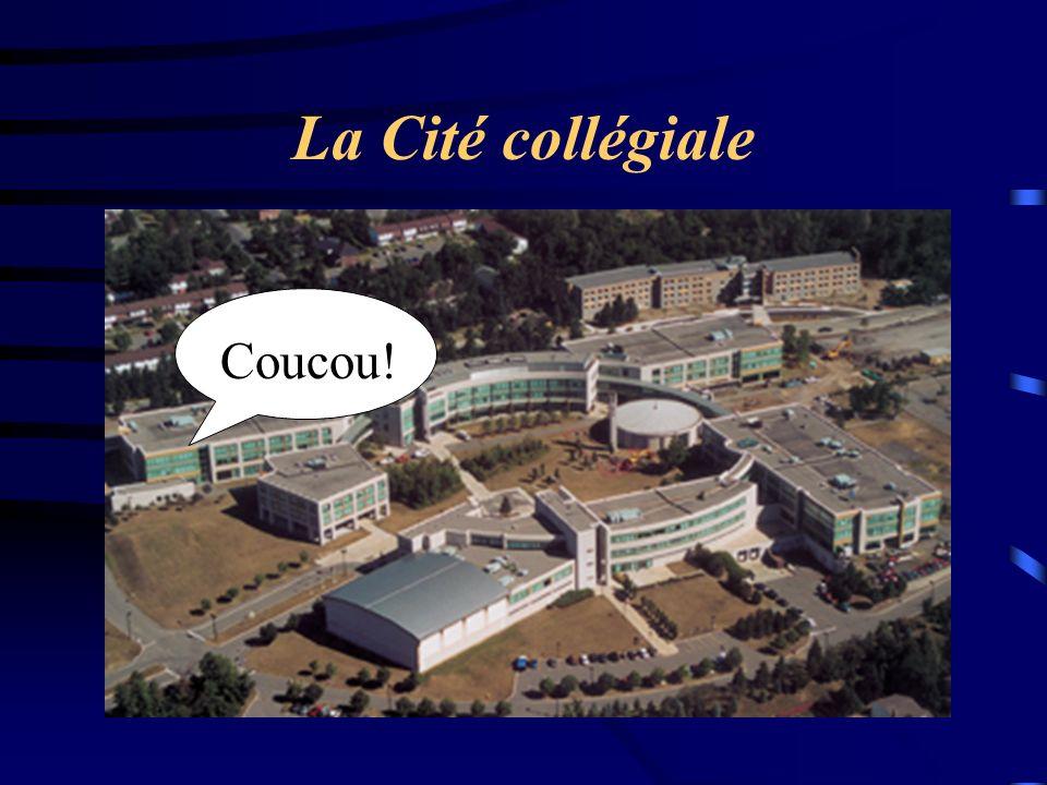 La Cité collégiale Coucou!