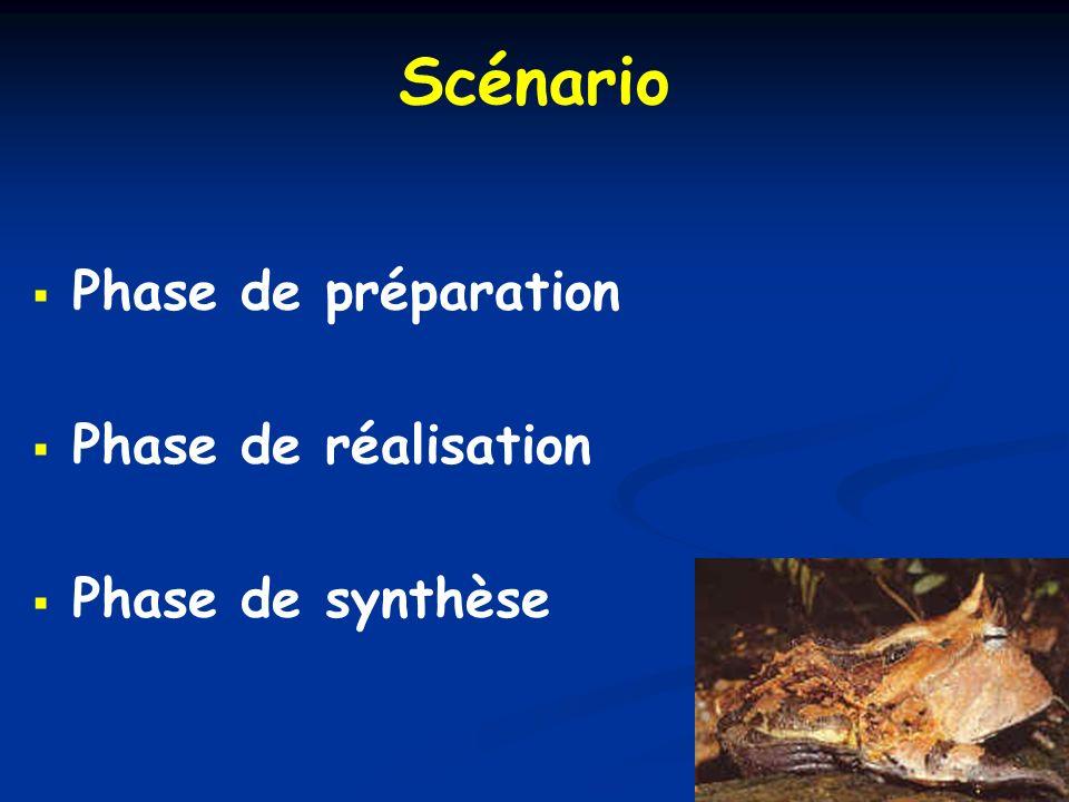 Scénario Phase de préparation Phase de réalisation Phase de synthèse