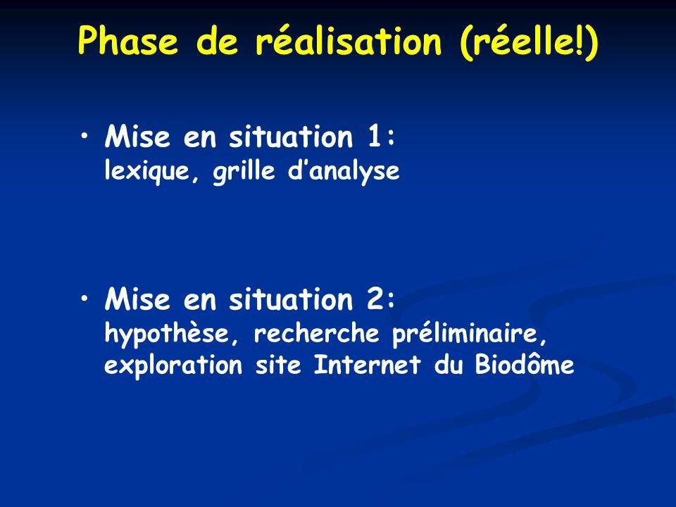 Phase de réalisation (réelle!) Mise en situation 1: lexique, grille danalyse Mise en situation 2: hypothèse, recherche préliminaire, exploration site