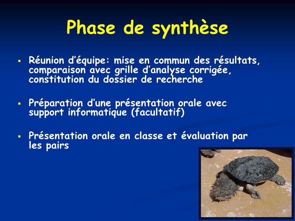 Phase de synthèse Réunion déquipe: mise en commun des résultats, comparaison avec grille danalyse corrigée, constitution du dossier de recherche Prépa