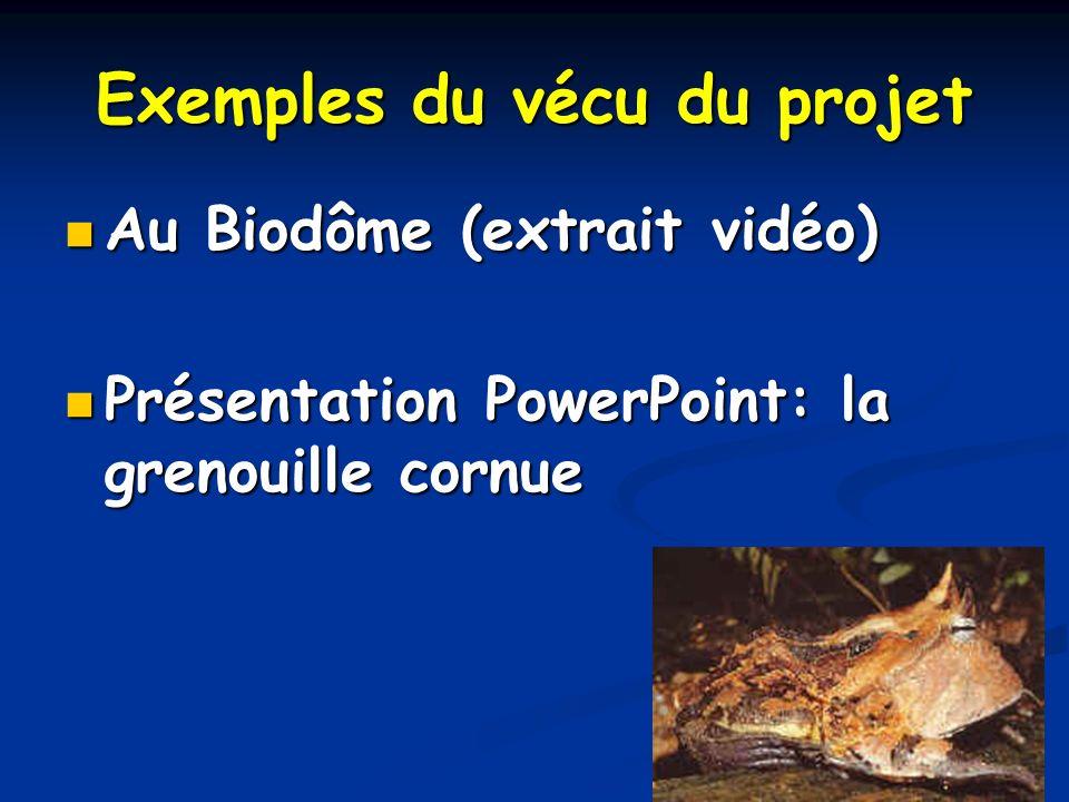 Exemples du vécu du projet Au Biodôme (extrait vidéo) Au Biodôme (extrait vidéo) Présentation PowerPoint: la grenouille cornue Présentation PowerPoint