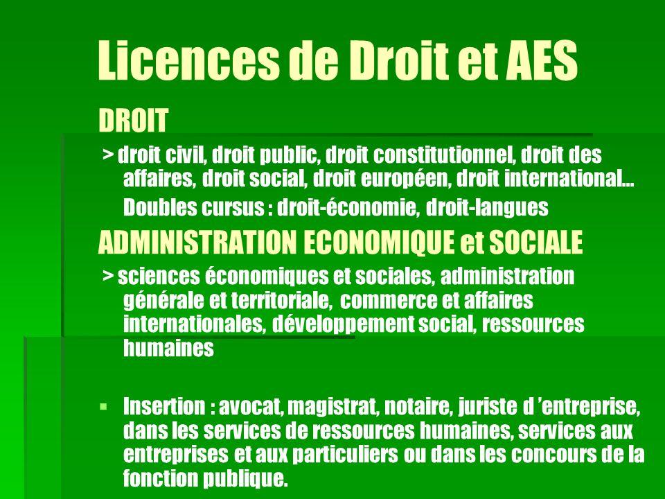 Licences de Droit et AES DROIT > droit civil, droit public, droit constitutionnel, droit des affaires, droit social, droit européen, droit internation