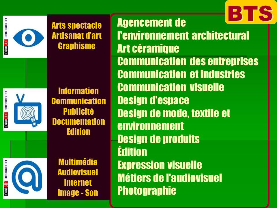 Arts spectacle Artisanat dart Graphisme Multimédia Audiovisuel Internet Image - Son Information Communication Publicité Documentation Edition BTS Agen