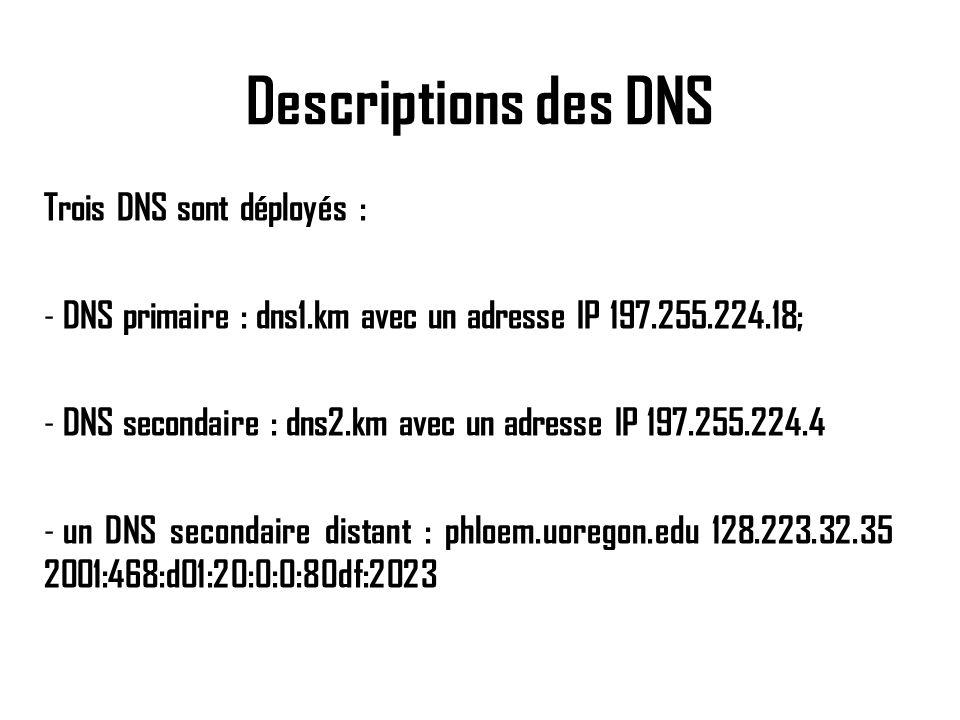 Descriptions des DNS Trois DNS sont déployés : - DNS primaire : dns1.km avec un adresse IP 197.255.224.18; - DNS secondaire : dns2.km avec un adresse