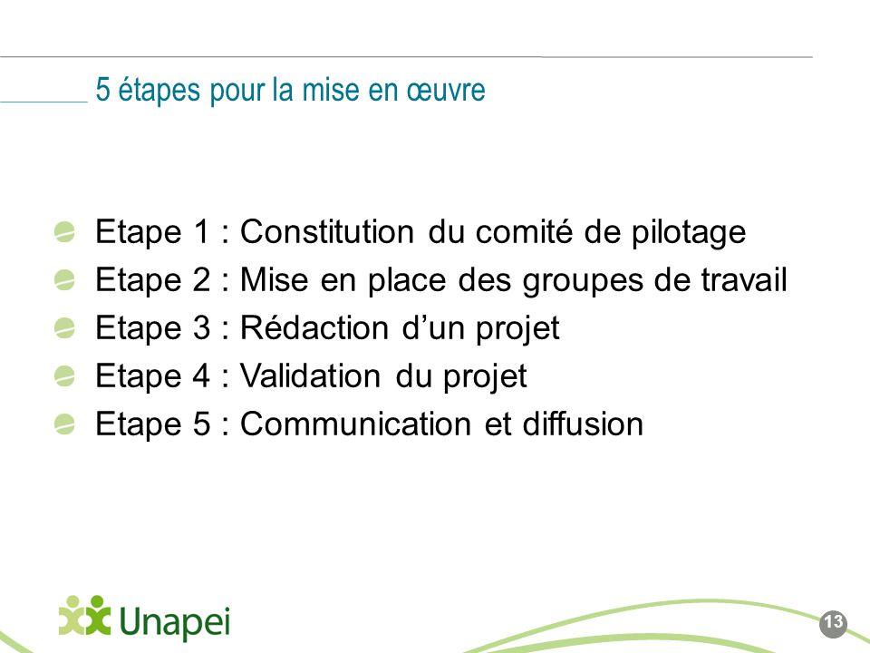 Etape 1 : Constitution du comité de pilotage Etape 2 : Mise en place des groupes de travail Etape 3 : Rédaction dun projet Etape 4 : Validation du projet Etape 5 : Communication et diffusion 5 étapes pour la mise en œuvre 13