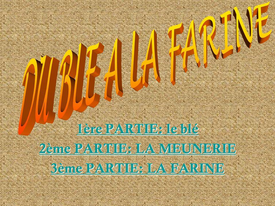 1ère PARTIE: le blé 1ère PARTIE: le blé 2ème PARTIE: LA MEUNERIE 2ème PARTIE: LA MEUNERIE 3ème PARTIE: LA FARINE 3ème PARTIE: LA FARINE