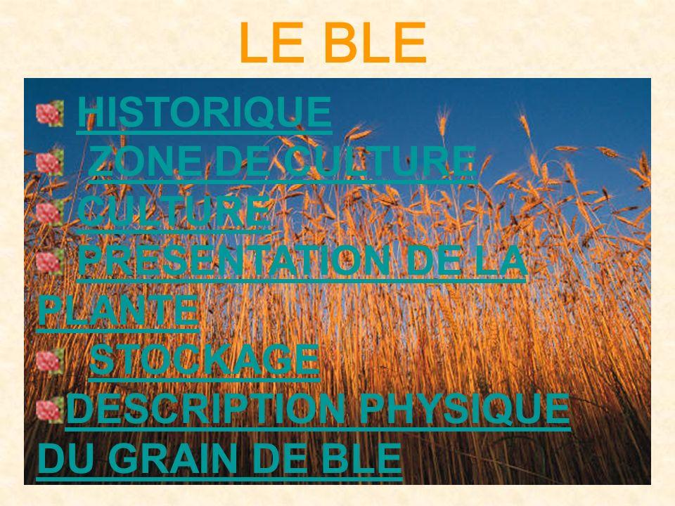 LE BLE HISTORIQUE ZONE DE CULTURE CULTURE PRESENTATION DE LA PLANTEPRESENTATION DE LA PLANTE STOCKAGE DESCRIPTION PHYSIQUE DU GRAIN DE BLE