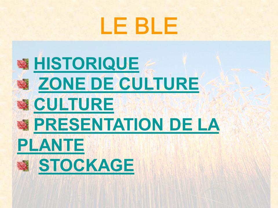 LE BLE HISTORIQUE ZONE DE CULTURE CULTURE PRESENTATION DE LA PLANTEPRESENTATION DE LA PLANTE RECOLTE ETSTOCKAGE