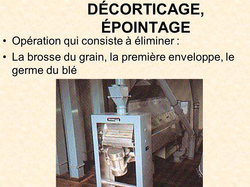 DÉCORTICAGE, ÉPOINTAGE Opération qui consiste à éliminer : La brosse du grain, la première enveloppe, le germe du blé