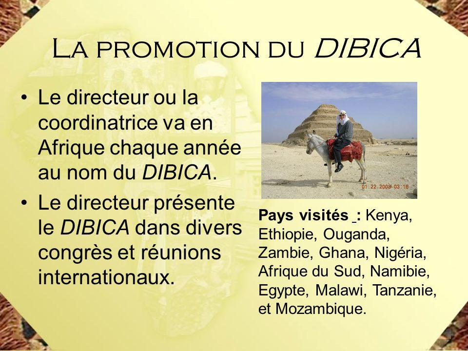 Le directeur ou la coordinatrice va en Afrique chaque année au nom du DIBICA. Le directeur présente le DIBICA dans divers congrès et réunions internat