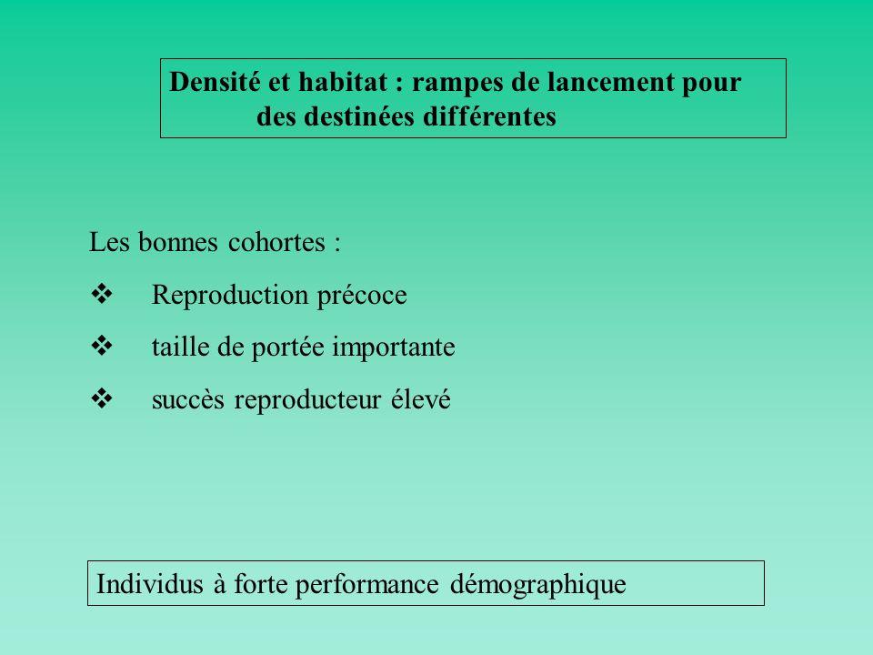 Densité et habitat : rampes de lancement pour des destinées différentes Les bonnes cohortes : Reproduction précoce taille de portée importante succès
