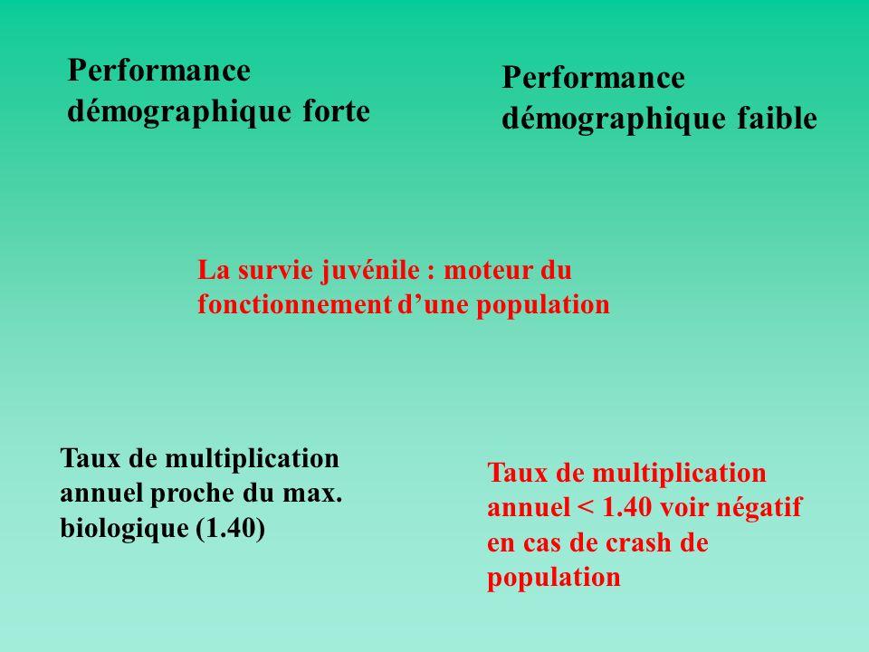 Performance démographique forte Performance démographique faible Taux de multiplication annuel proche du max. biologique (1.40) Taux de multiplication