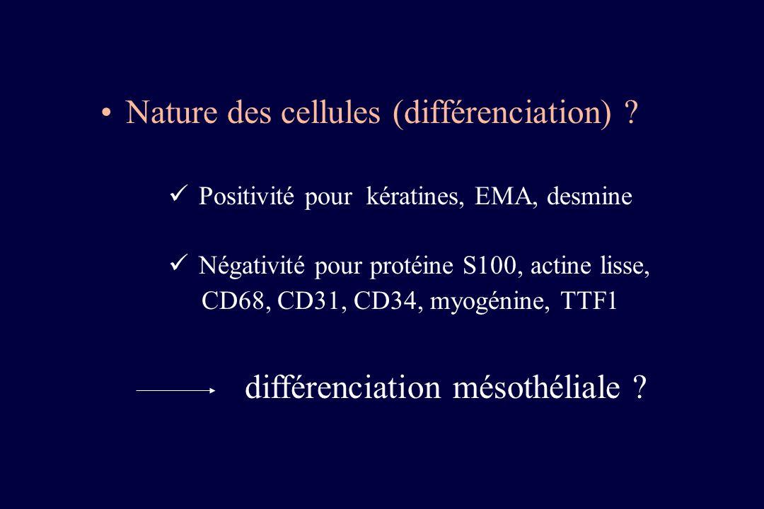 Nature des cellules (différenciation) ? Positivité pour kératines, EMA, desmine Négativité pour protéine S100, actine lisse, CD68, CD31, CD34, myogéni