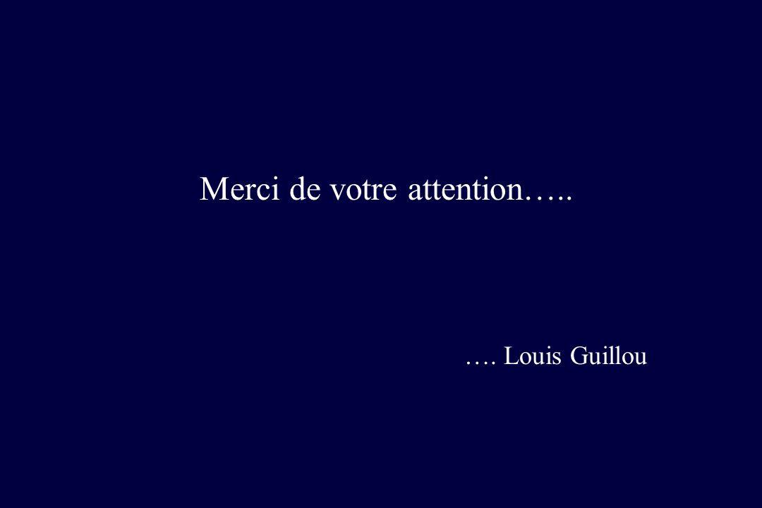 Merci de votre attention….. …. Louis Guillou