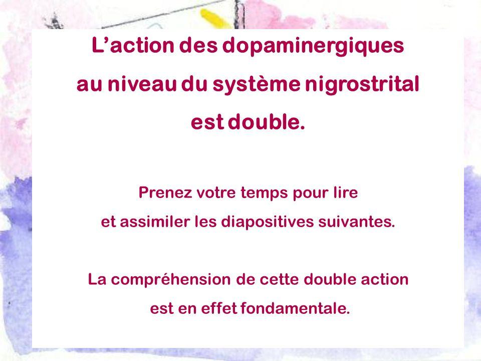 Laction des dopaminergiques au niveau du système nigrostrital est double. Prenez votre temps pour lire et assimiler les diapositives suivantes. La com