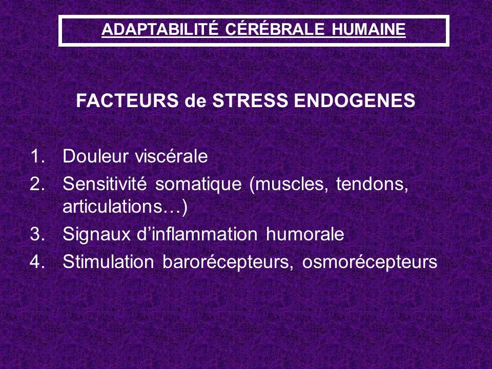 ADAPTABILITÉ CÉRÉBRALE HUMAINE FACTEURS de STRESS ENDOGENES 1.Douleur viscérale 2.Sensitivité somatique (muscles, tendons, articulations…) 3.Signaux d