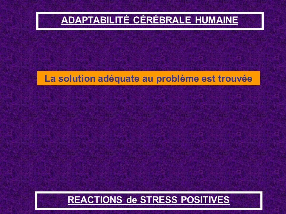 ADAPTABILITÉ CÉRÉBRALE HUMAINE La solution adéquate au problème est trouvée REACTIONS de STRESS POSITIVES