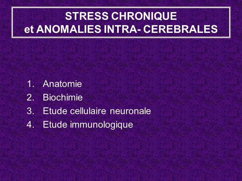 STRESS CHRONIQUE et ANOMALIES INTRA- CEREBRALES 1.Anatomie 2.Biochimie 3.Etude cellulaire neuronale 4.Etude immunologique