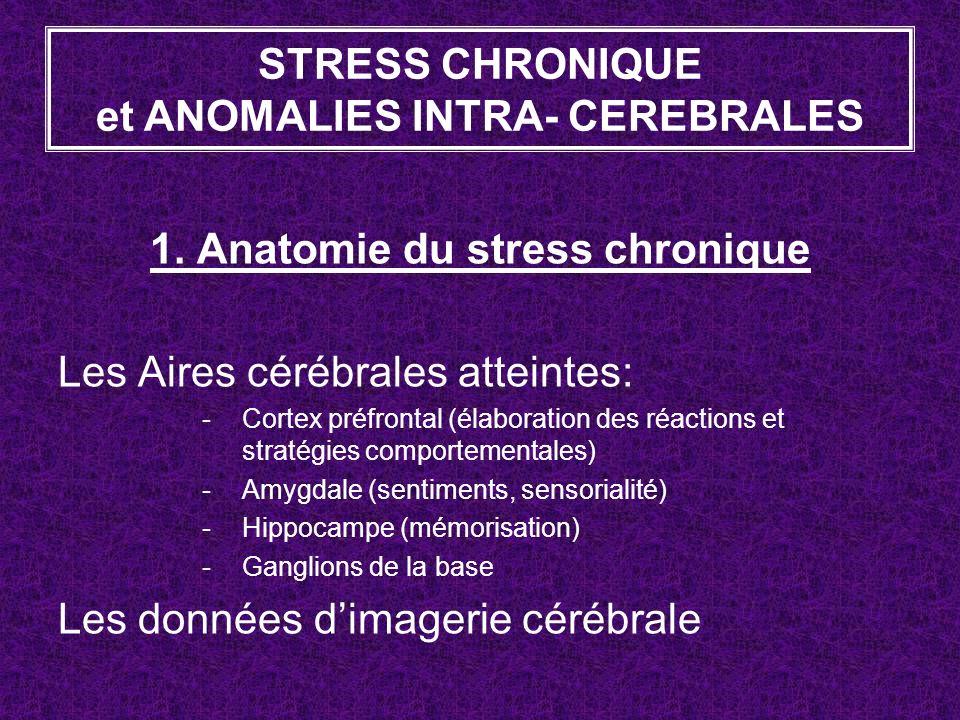1. Anatomie du stress chronique Les Aires cérébrales atteintes: -Cortex préfrontal (élaboration des réactions et stratégies comportementales) -Amygdal