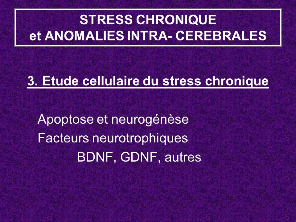 3. Etude cellulaire du stress chronique Apoptose et neurogénèse Facteurs neurotrophiques BDNF, GDNF, autres STRESS CHRONIQUE et ANOMALIES INTRA- CEREB