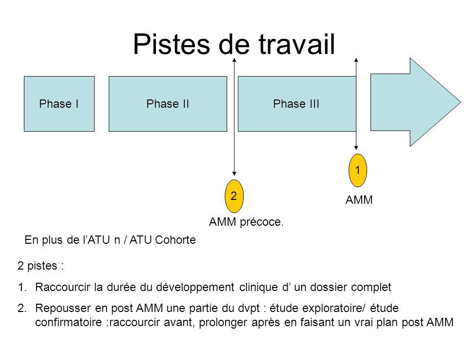 Pistes de travail Phase IPhase IIPhase III 2 pistes : 1.Raccourcir la durée du développement clinique d un dossier complet 2.Repousser en post AMM une
