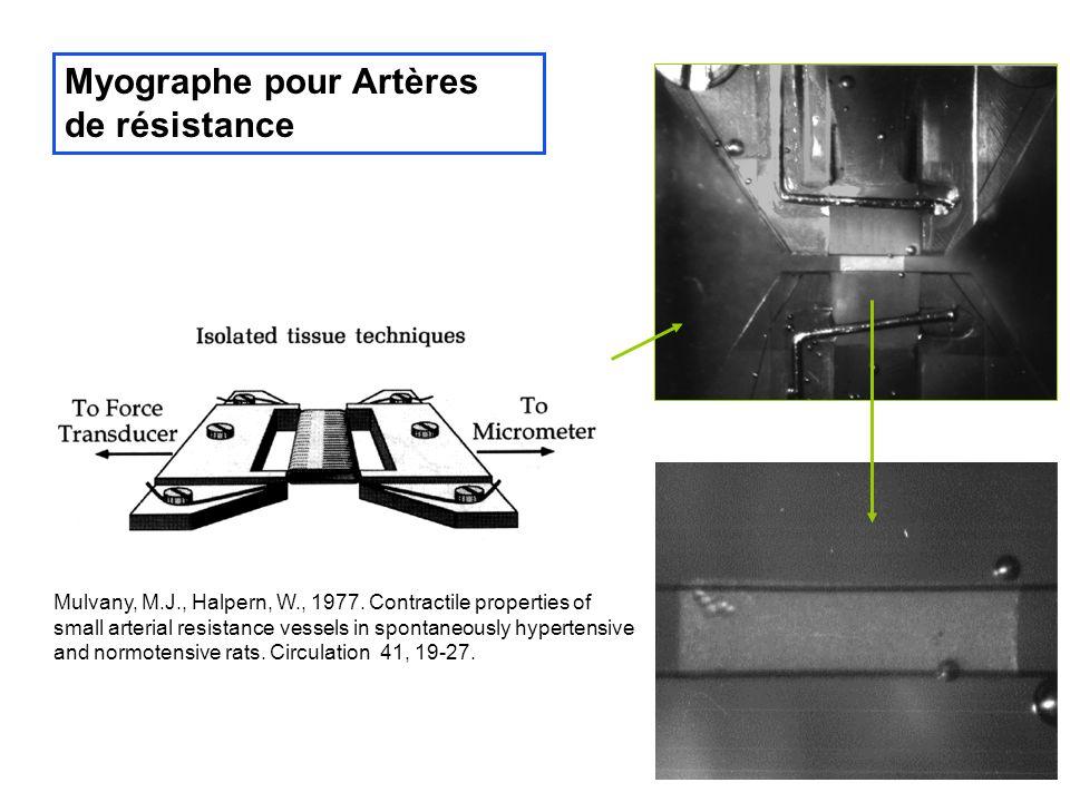 Tests AO - ORAC Oxydation de la fluorescéine en présence dAAPH (Ou et al, 2001)