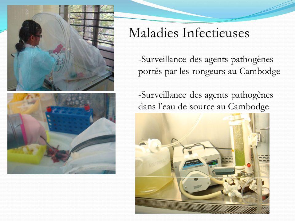-Surveillance des agents pathogènes portés par les rongeurs au Cambodge -Surveillance des agents pathogènes dans leau de source au Cambodge Maladies I