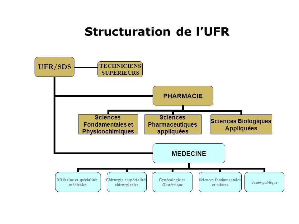 Structuration de lUFR TECHNICIENS SUPERIEURS
