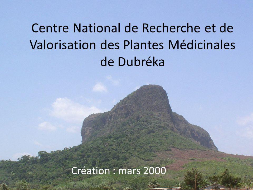 Centre National de Recherche et de Valorisation des Plantes Médicinales de Dubréka Création : mars 2000