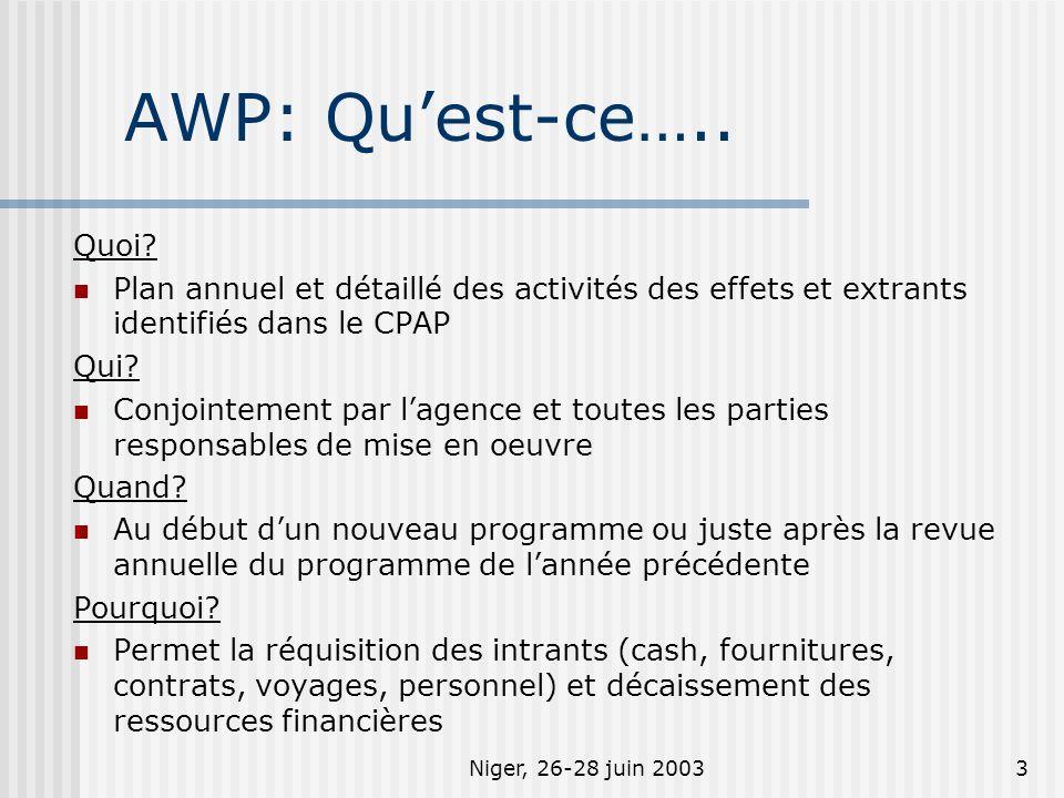 Niger, 26-28 juin 20034 AWP : Contenu Page de garde - signature du/des partenaire(s) de mise en œuvre et lagence Partie descriptive (Optionnel) Plan de travail - établit lien entre résultat UNDAF avec détails operationnels (extrants, activités, calendrier de mise en oeuvre, responsabilité, et budget)