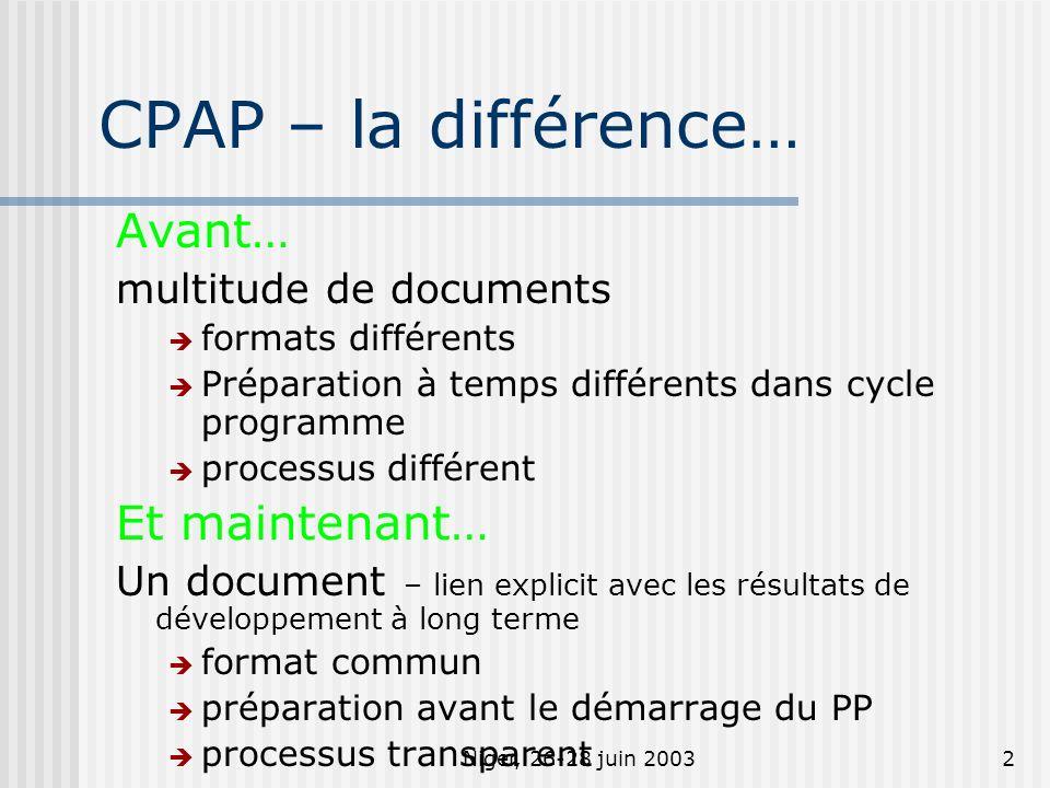 Niger, 26-28 juin 20032 CPAP – la différence… Avant… multitude de documents formats différents Préparation à temps différents dans cycle programme processus différent Et maintenant… Un document – lien explicit avec les résultats de développement à long terme format commun préparation avant le démarrage du PP processus transparent