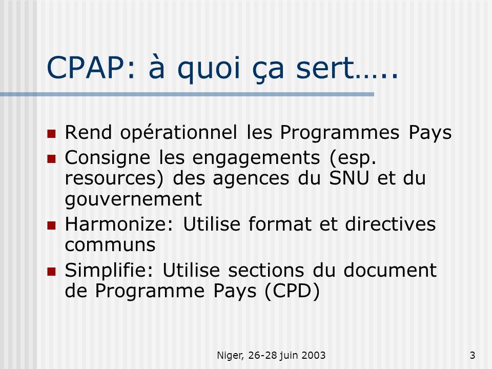 Niger, 26-28 juin 20033 CPAP: à quoi ça sert….. Rend opérationnel les Programmes Pays Consigne les engagements (esp. resources) des agences du SNU et