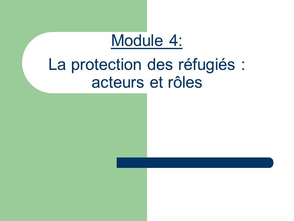 Module 4: La protection des réfugiés : acteurs et rôles