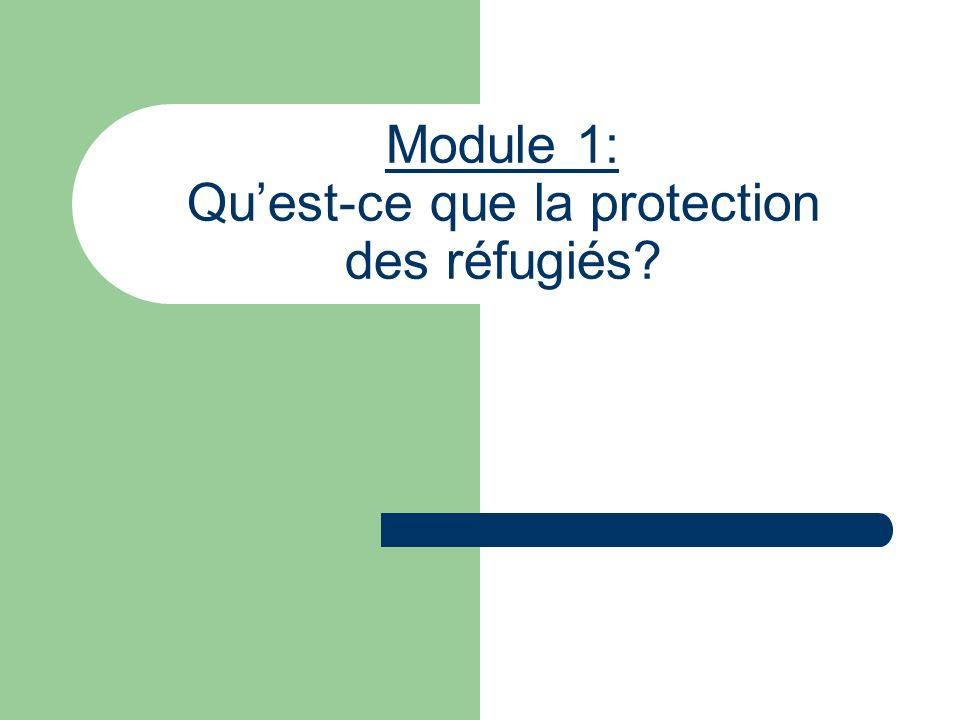 Objectifs Recenser les normes internationales qui forment le cadre de la protection internationale des réfugiés ; Donner une vue densemble des droits des réfugiés consacrés par le droit international relatif aux réfugiés et le droit international des droits de lhomme ; Exposer de quelle manière les programmes dassistance peuvent renforcer la protection des réfugiés.