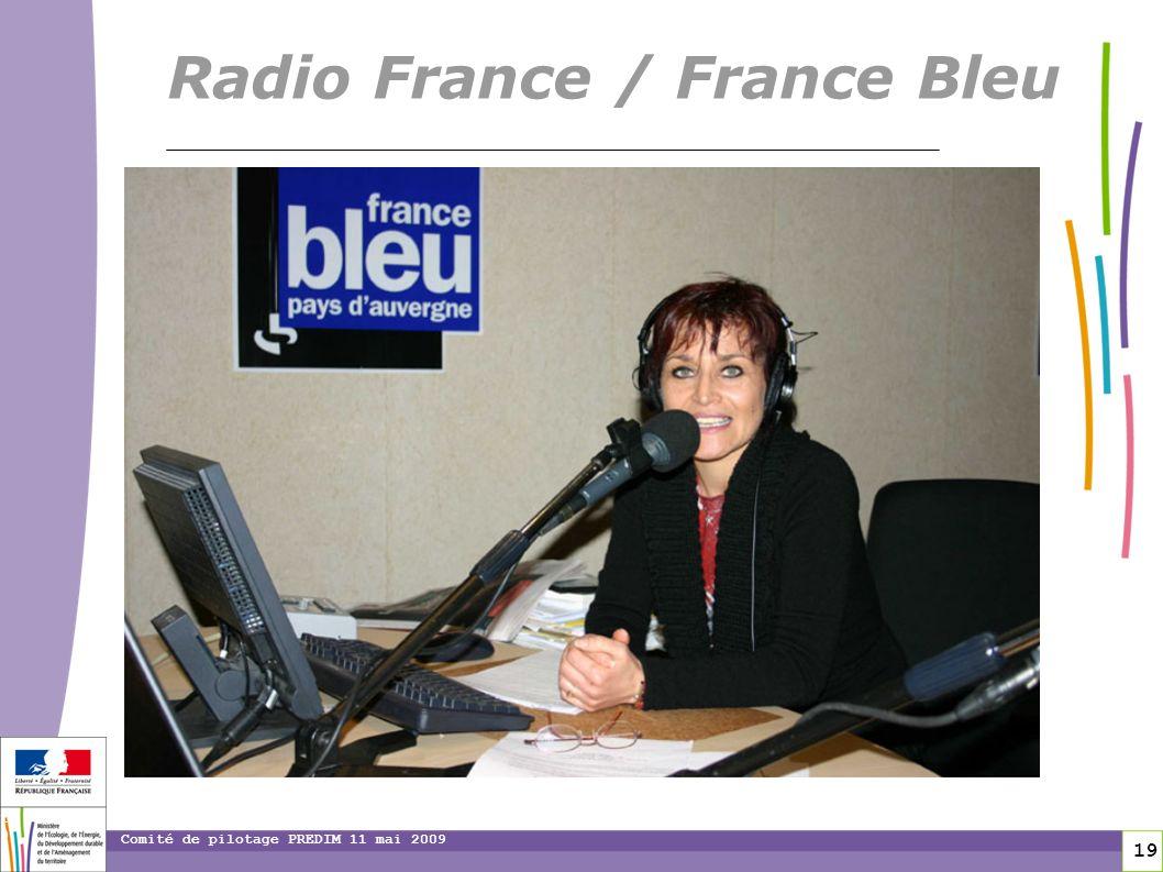 19 19 Comité de pilotage PREDIM 11 mai 2009 Radio France / France Bleu