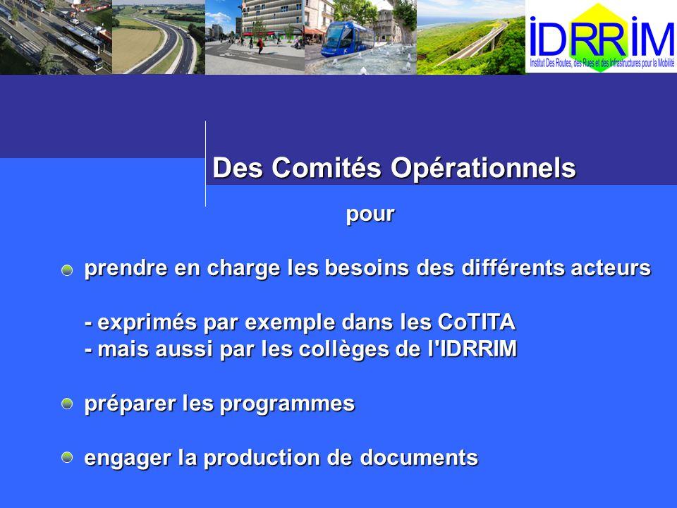 Des Comités Opérationnels pour prendre en charge les besoins des différents acteurs - exprimés par exemple dans les CoTITA - mais aussi par les collèg