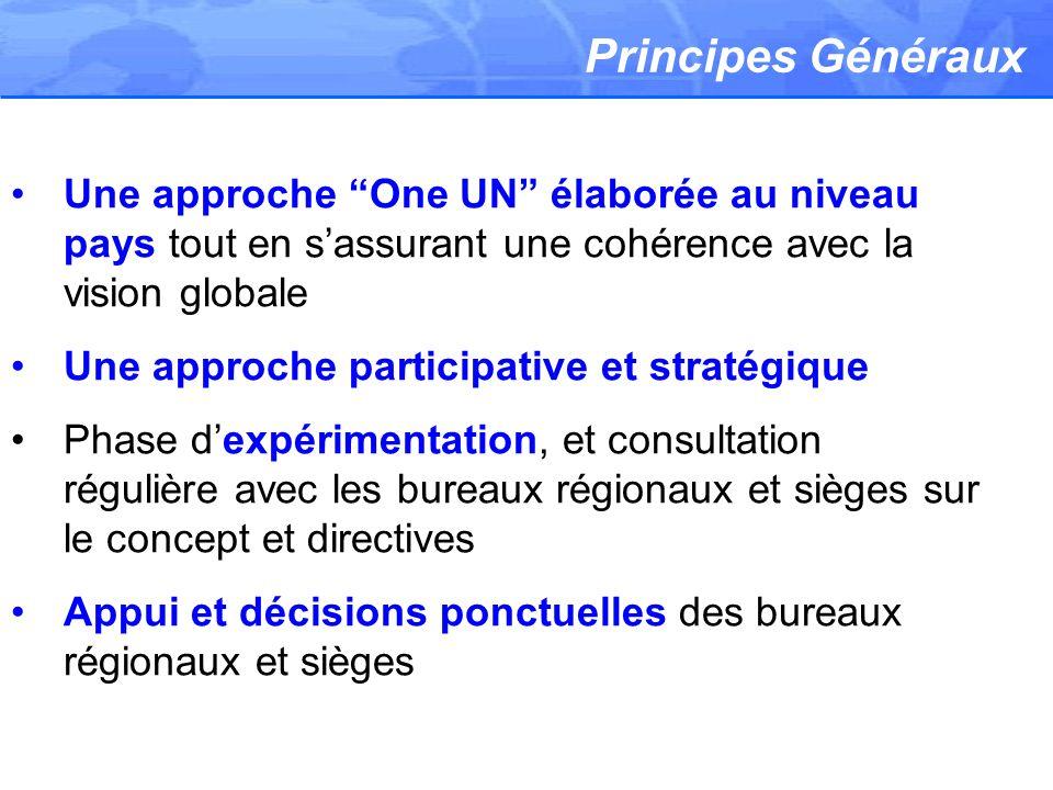 Principes Généraux Une approche One UN élaborée au niveau pays tout en sassurant une cohérence avec la vision globale Une approche participative et st